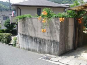 戸建てリフォーム 駐車場施工前